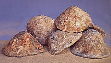 Conical lead ingots